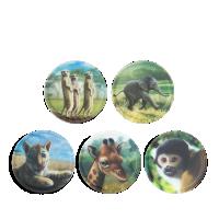 Ergobag Kletties - set mláďatá zo zoo